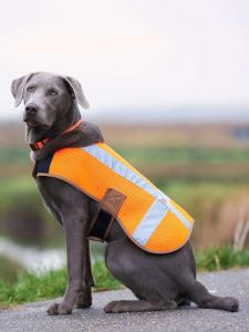 Carhartt P000342 Dog Safety Vest